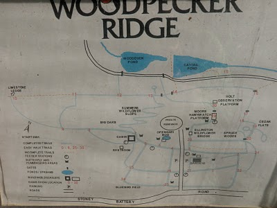 Woodpecker Ridge Map