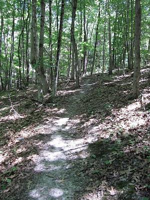 Ellett Valley Trail