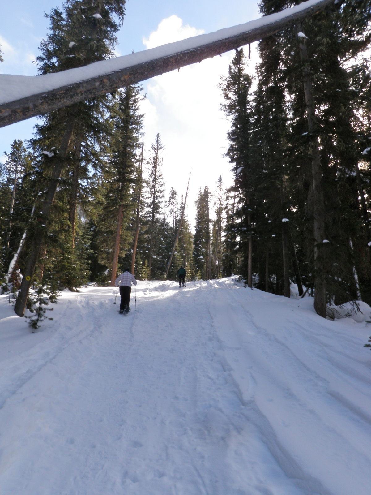 Moose Tracks Trail – Snowshoeing at Big Sky Resort, MT