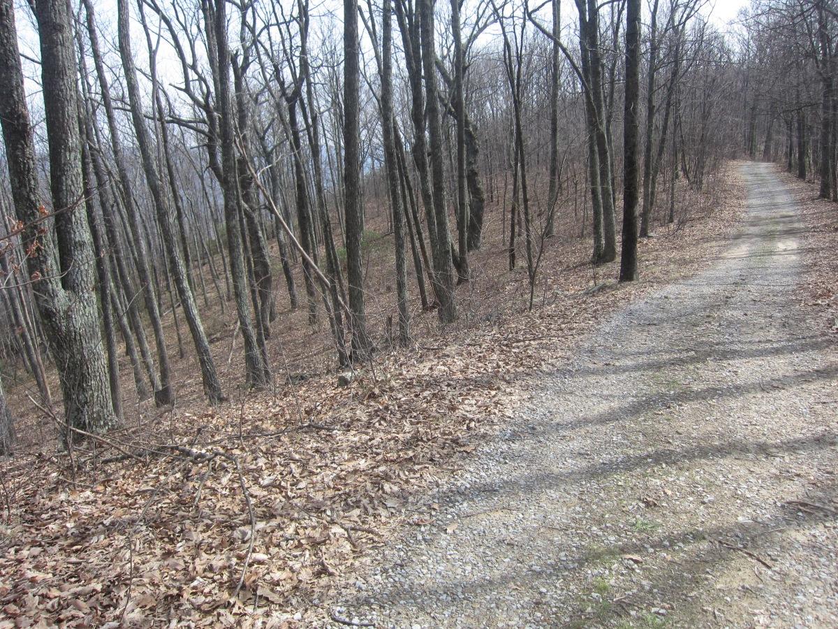 Mountain Biking on Brush Mountain – Blacksburg,Virginia