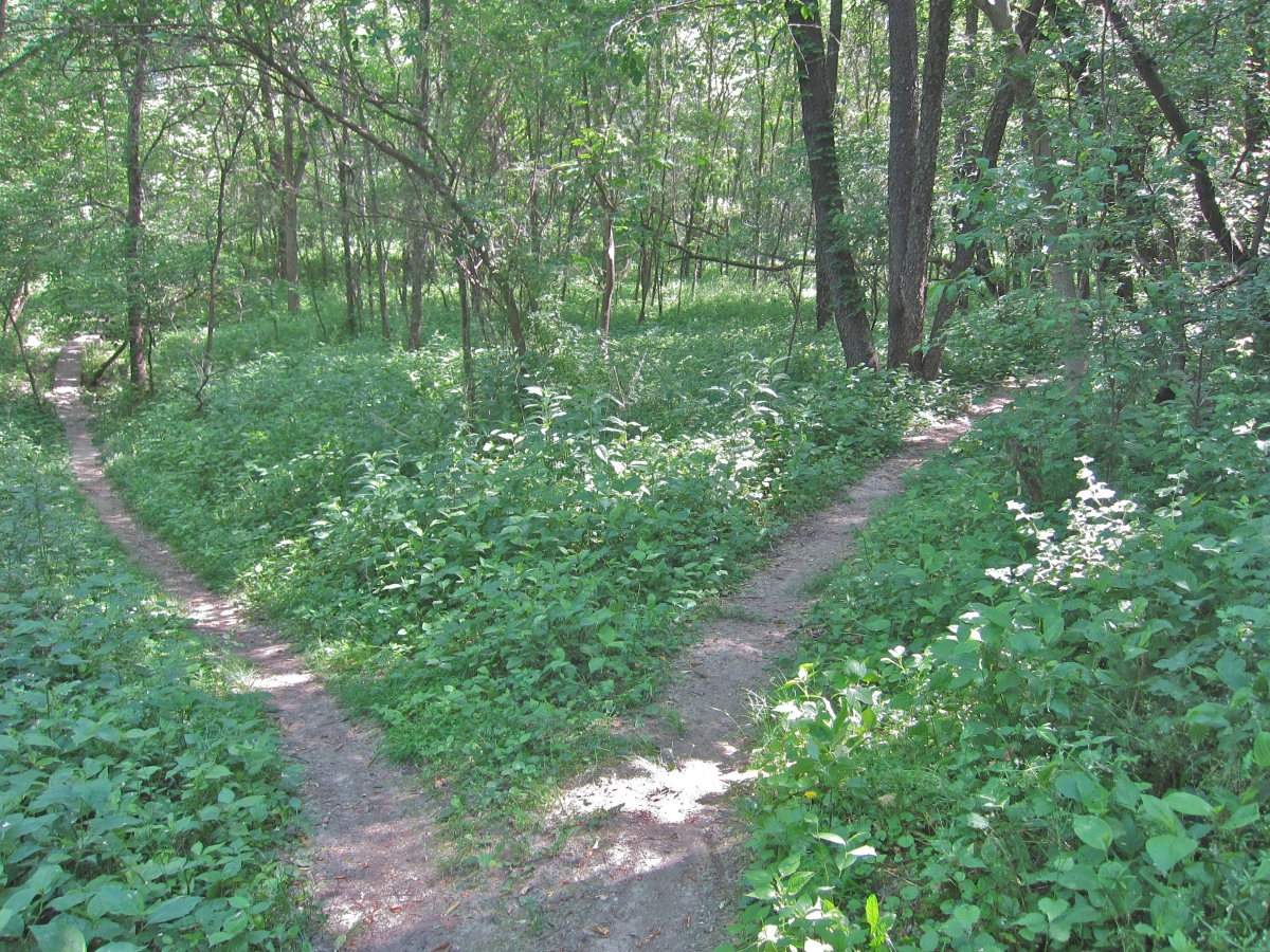 2012 Beverly Park Mountain Bike Race Course – Iowa