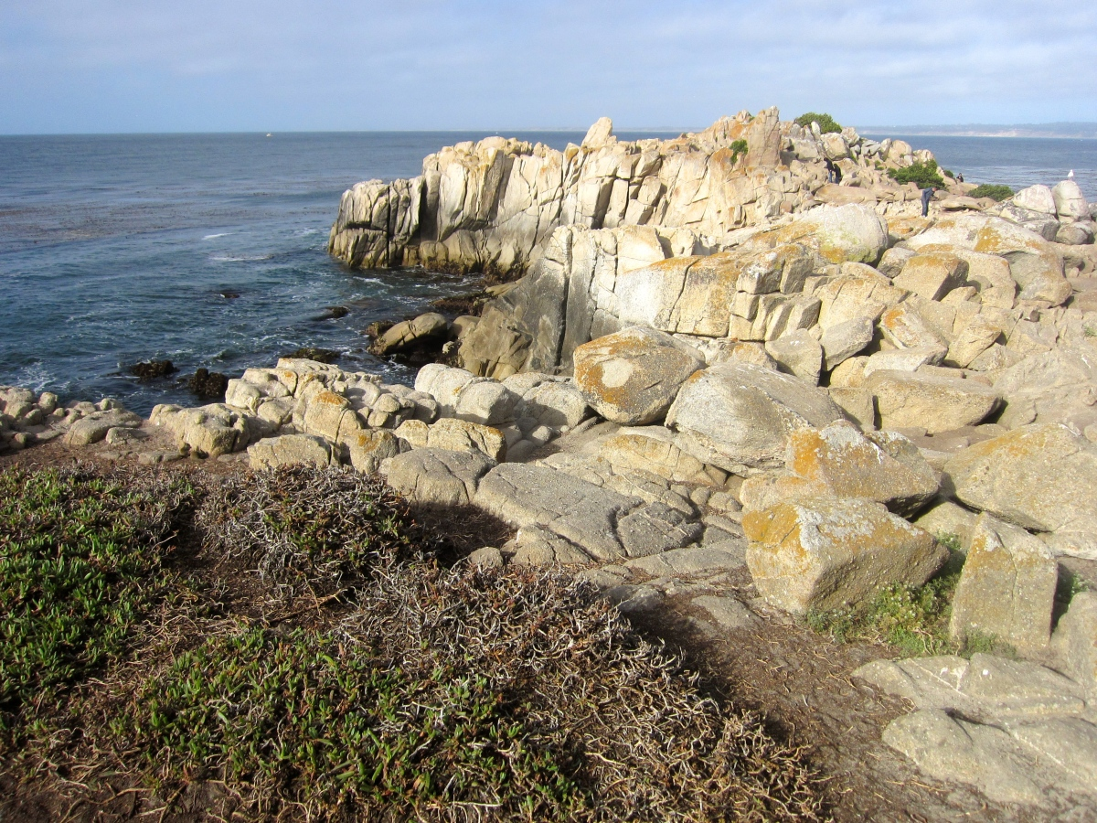 Fun Things To Do With Kids in Monterey, CA