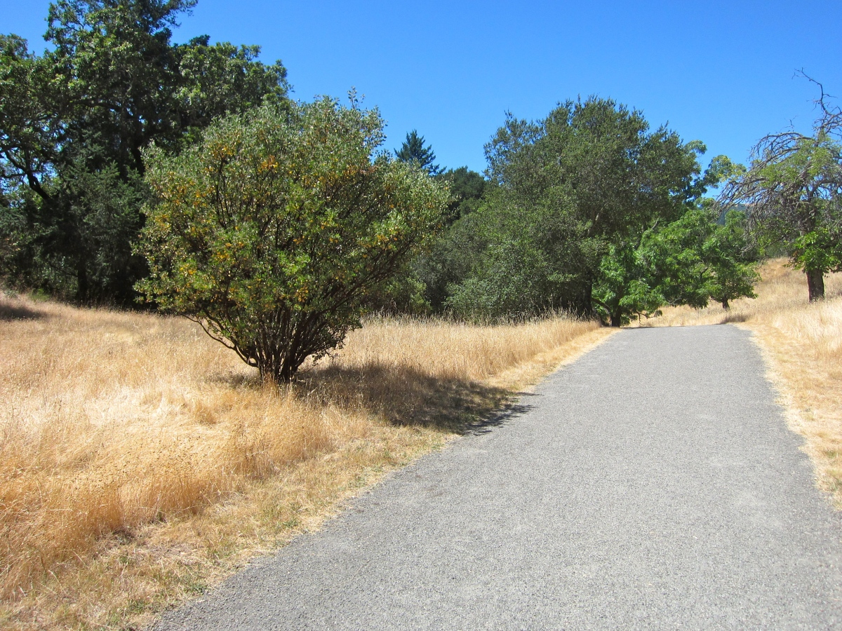Jack London State Park – Hiking Trails – Glen Ellen, CA