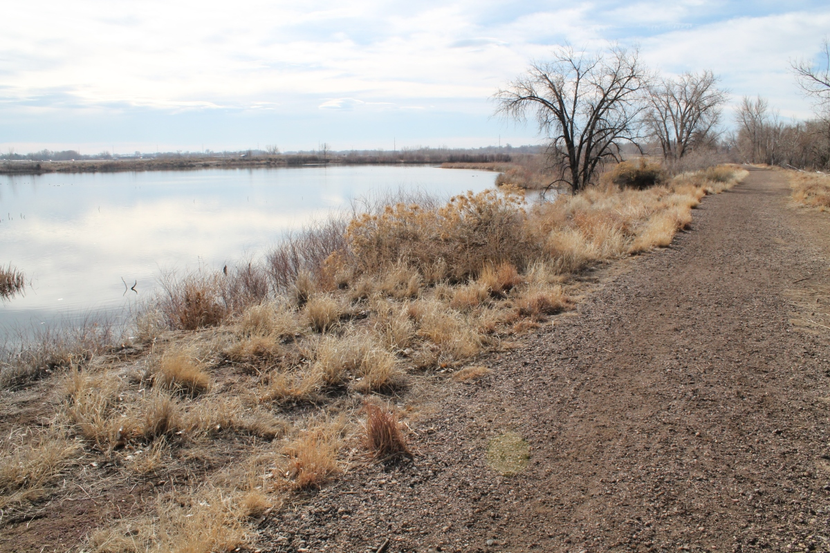 Riverbend Ponds Natural Area – Fort Collins, CO