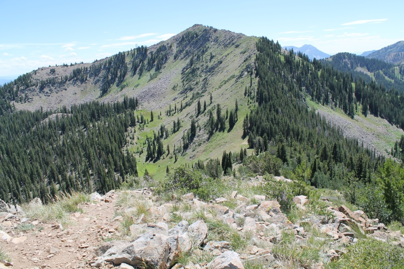 Peak 10,420 to Bloods Lake Trail – Guardsman Pass, Utah
