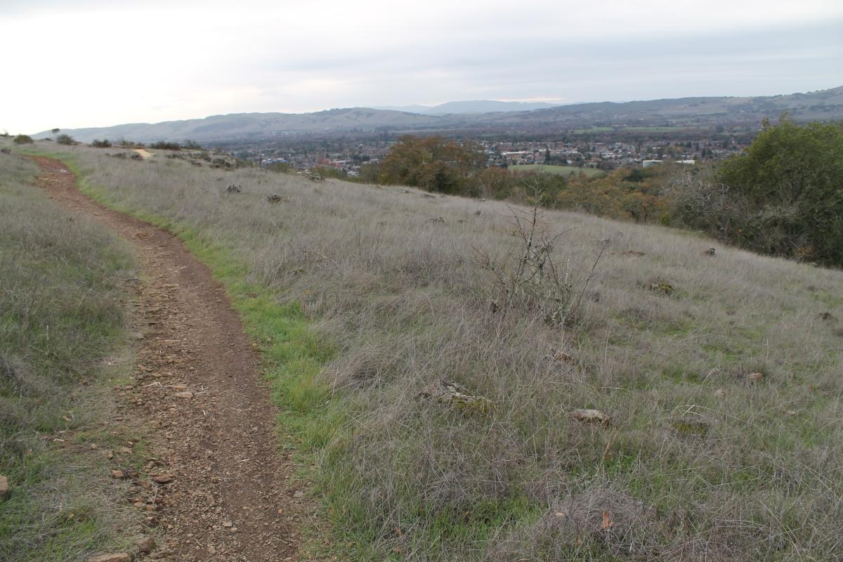 Sonoma Overlook Trail – Sonoma,CA