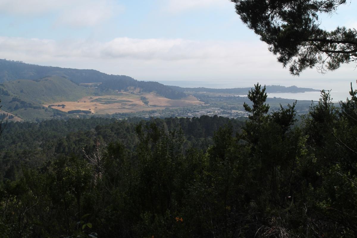 Jacks Peak – Monterey,CA